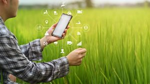 digital marketing farming agriculture businesses