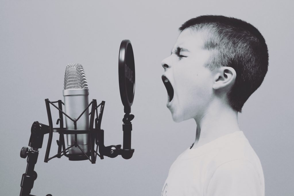 Brand Voice vs. Brand Tone What's the Difference?